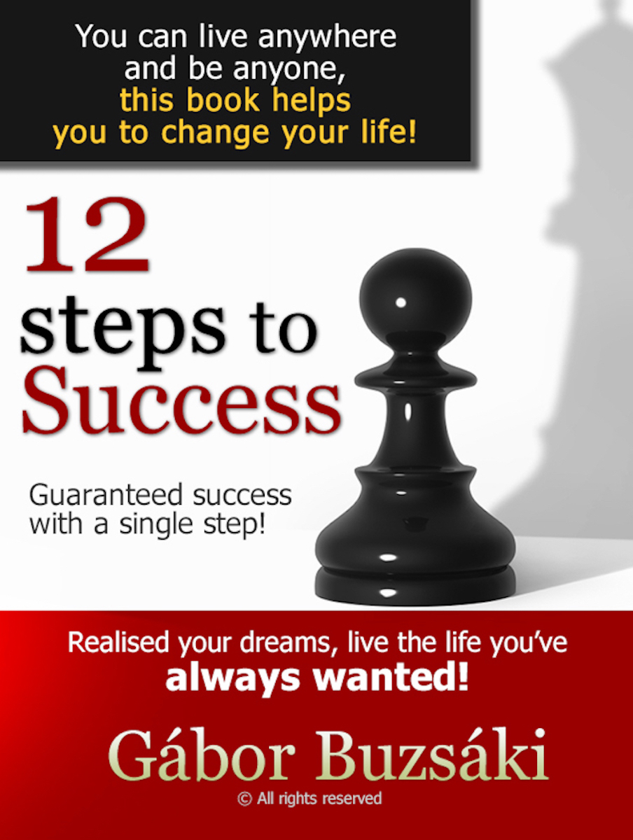 Cover of 12 Steps to Success